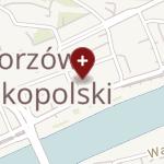 Eurodent M. Buszkiewicz & W. Dmytrów na mapie
