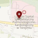 Lubuski Szpital Specjalistyczny Pulmonologiczno-Kardiologiczny w Torzymiu na mapie